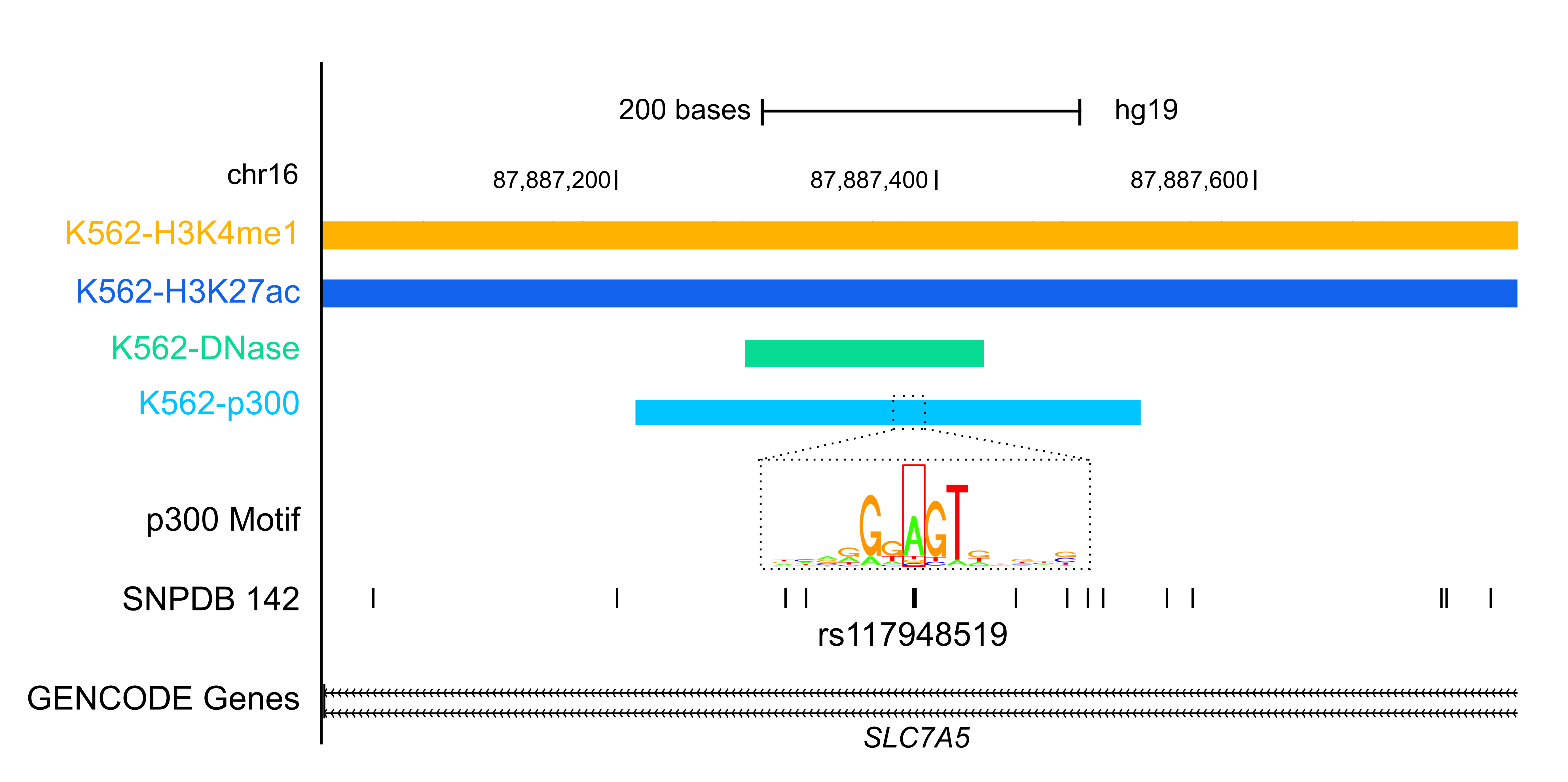 Funseq Is Another Encode Resource For Annotating Both Germline And Somatic  Variants, Particularly In The Noncoding Regions Of Cancer Genomes
